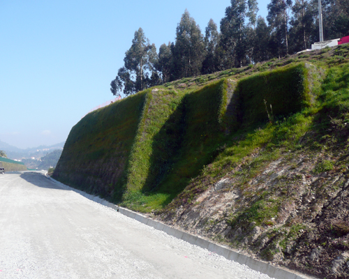 Muros Ecológicos 1
